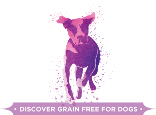 Discover Grain Free for Dogs