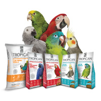 Tropican Bird Food