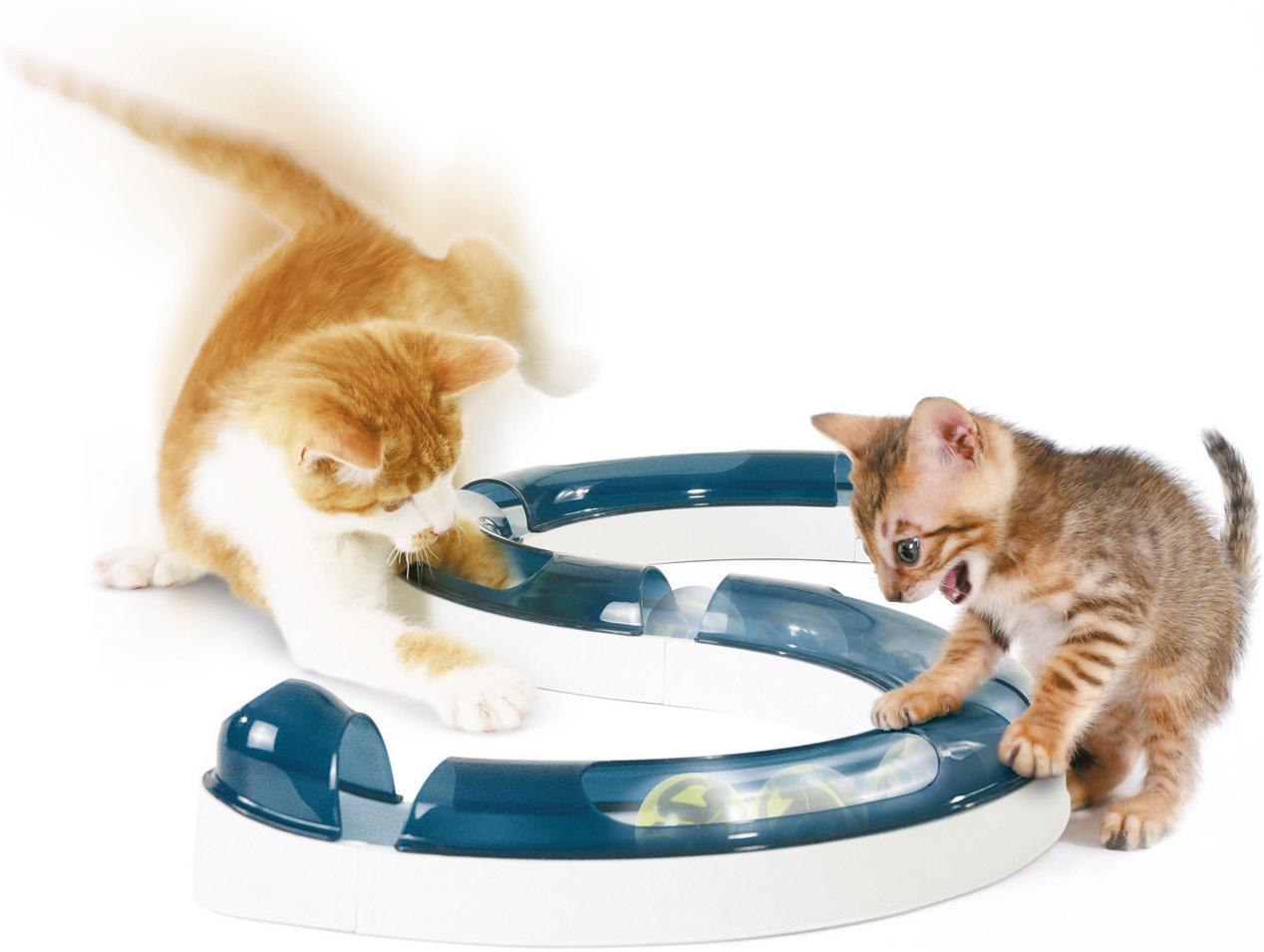 50730 Catit Design Senses Play Circuit