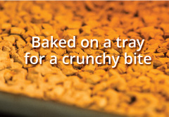Made with delicious human-grade ingredients - non greasy, crunchy outside doesn't stick to your fingers