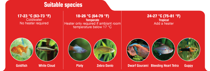 Suitable species: Goldfish, White Cloud, Platy, Zebra Danio, Dwarf Gourami, Bleeding Heart Tetra, Guppy