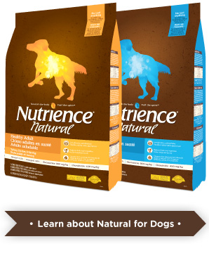 Learn more about Natural for dogs