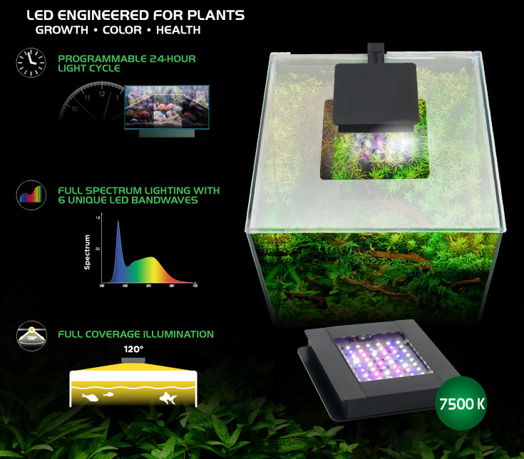 LED Engineered for plants - growth, colour, health