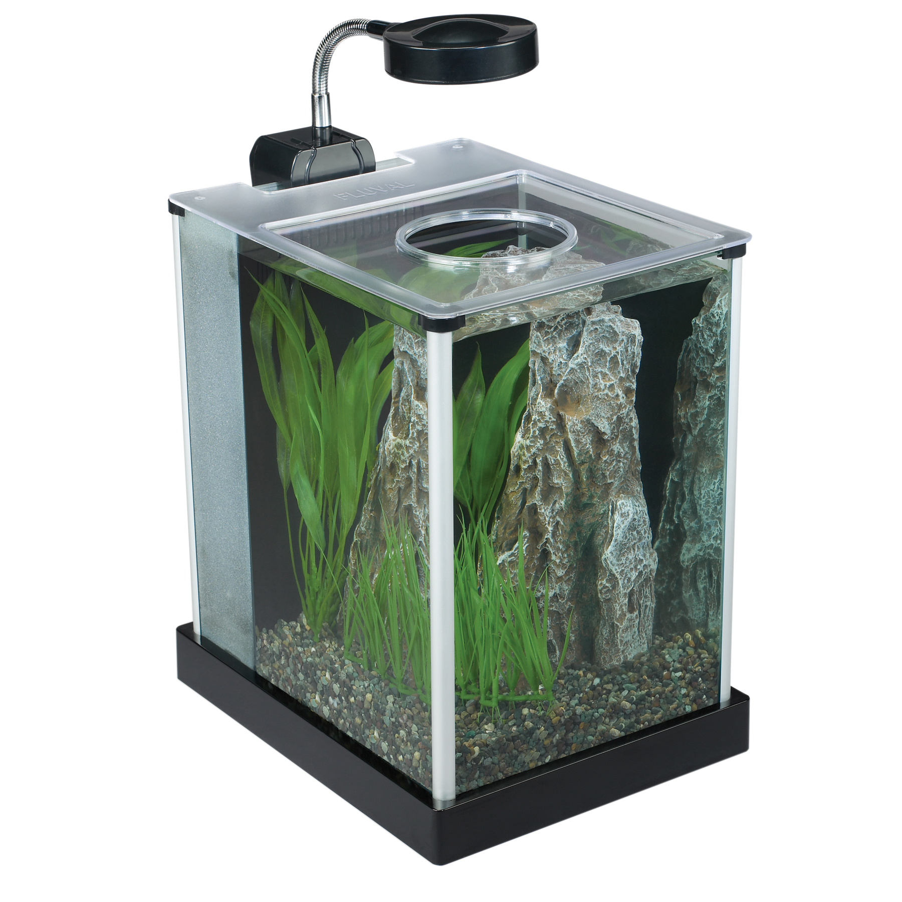 Fluval spec aquariums for 2 gallon betta fish tank