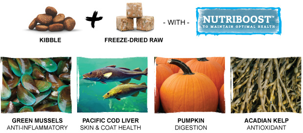 Kibble + Freeze-Dried raw with Nutriboost