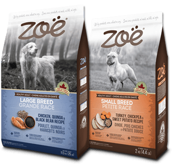 Zoë Dog food