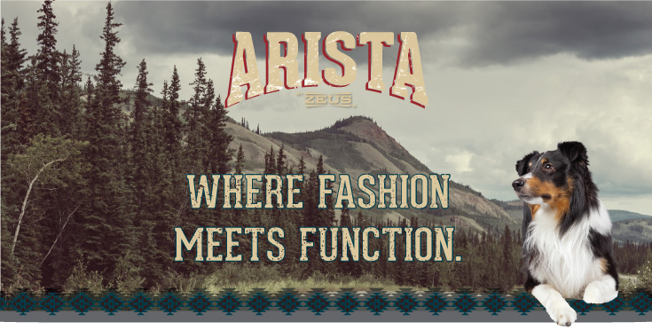 Arista by Zeus - Where fashion meets functions.