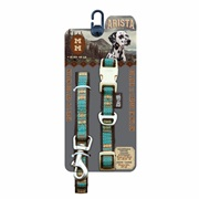 Arista Collar & Leash Set - Medium - Indie