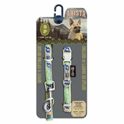 Arista Collar & Leash Set - Small - Calypso