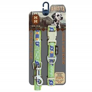 Arista Collar & Leash Set - Medium - Calypso