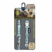Arista Collar & Leash Set - Small - Jazz