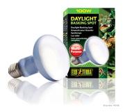 Exo Terra Daylight Basking Spot Lamp - R25 / 100 W