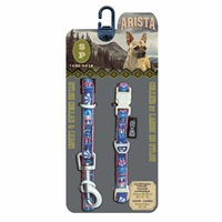 Arista Collar & Leash Set - Small - Flamenco