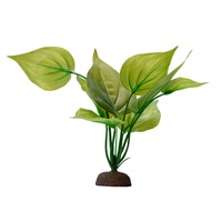 Fluval Aqualife Plant Scapes Variegated Lizard's Tail - 20 cm (8 in)