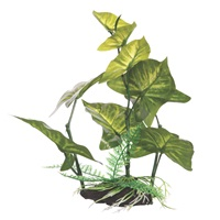 "Fluval Decorative Plant - Anubias Gracilis - Medium - 22 cm (9"""") with base"