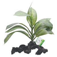 "Fluval Decorative Plants - Stemped Anubias - 17 cm (7"") on root"