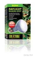 Exo Terra Daylight Basking Spot Lamp - R20 / 50 W