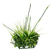 Fluval Chi Boxwood & Tall Grass Ornament