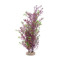 Fluval Aqualife Plant Scapes Red Rotala - 25.5 cm (10 in)