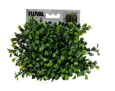 Fluval Chi Boxwood Ornament