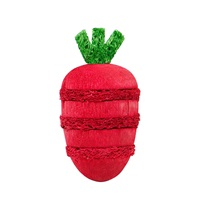 Living World Nibblers - Strawberry Loofah & Wood Chew