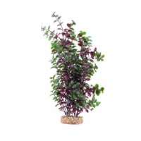 Fluval Aqualife Plant Scapes Red Bacopa - 35.5 cm (14 in)