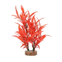 Fluval Aqualife Plant Scapes Intense Red Hygrophila - 20 cm (8 in)