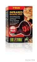 Exo Terra Infrared Basking Spot - R20 / 75 W