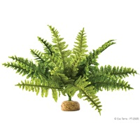Exo Terra Rainforest Plant - Boston Fern - Medium