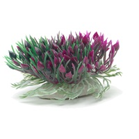 Marina Betta Purple Hearts Shrub - 7.6 cm (3 in)
