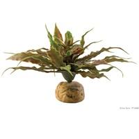 Exo Terra Desert Plant - Star Cactus
