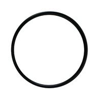 Aqua Clear 110/500 Seal Ring