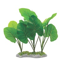"Fluval Decorative Plants - Echinodorus - 29 cm (11.5"") with Moss base"