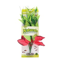 "Marina Naturals  Red & Green Pickerel Silk Plant - Large - 13 - 14"" (33 - 35.5 cm)"