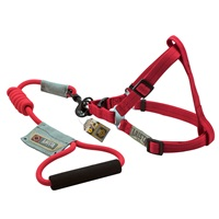 Arista Round Harness & Leash Set - Small - Red