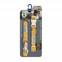 Arista Collar & Leash Set - Large - Orange