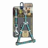 Arista Harness & Leash Set - Small - Indie