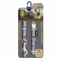 Arista Collar & Leash Set - Small - New Wave