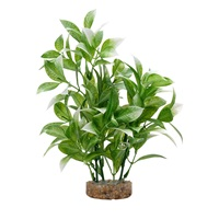 Fluval Aqualife Plant Scapes White-Tipped Ludwigia - 20 cm (8 in)