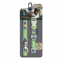 Arista Collar & Leash Set - Large - Calypso