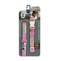 Arista Collar & Leash Set - Large - Pink