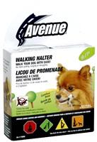 "Avenue Walking Halter - Small - 30 - 44 cm (12""-17.5"")"