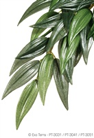 Exo Terra Silk Plant - Ruscus - Small