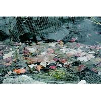 Laguna Protective Pond Netting - 4.5 x 6 m (15 x 20 ft) - Black