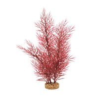 Fluval Aqualife Plant Scapes Scarlet Eichornea - 35.5 cm (14 in)