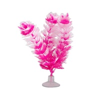 "Marina Betta Foxtail Plant with Suction Cup - 12.7 cm (5"")"