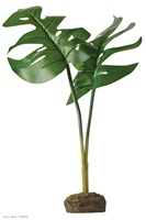 Exo Terra Tree Frog Smart Plant - Phyllo