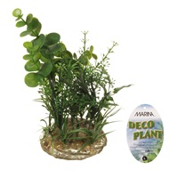 Marina Deco Plant Ornament - Large - 17.8 cm (7 in)