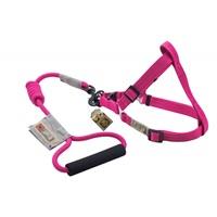Arista Round Harness & Leash Set - Small - Pink
