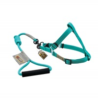 Arista Round Harness & Leash Set - Small - Green